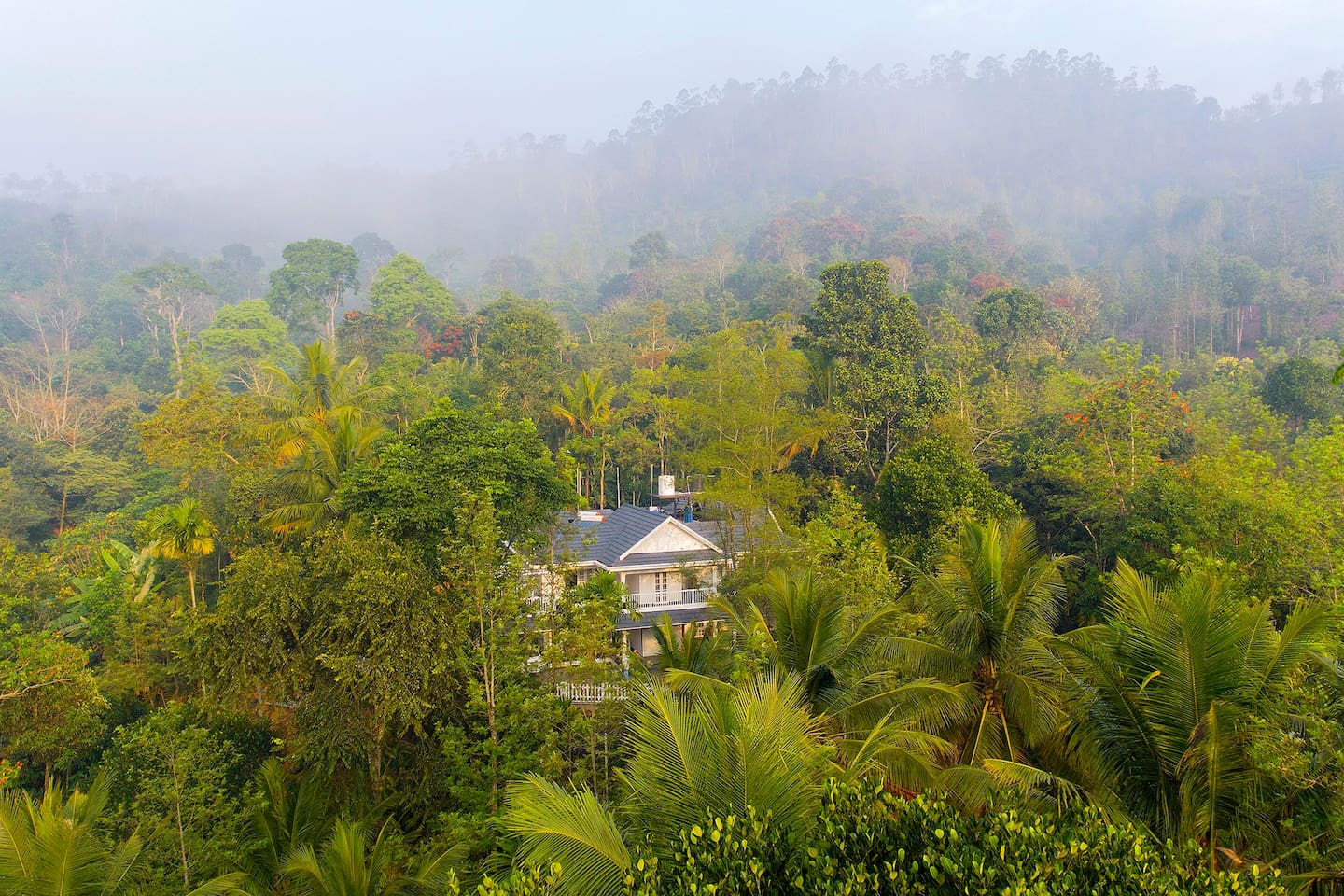 The homestay is located in an idyllic plantation surrounded by lush rolling hills and tea estates