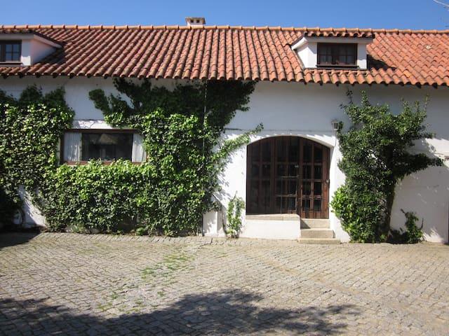 Garden House 1680 - Porto - Talo