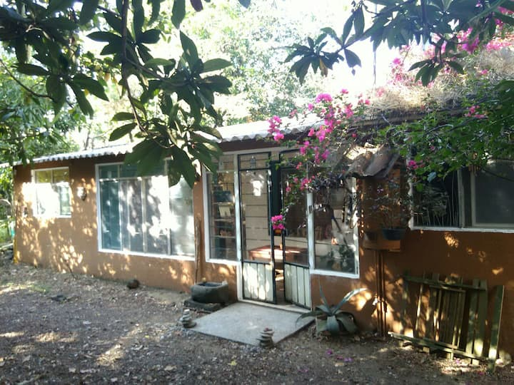 Zen garden house in magic Tepoztlán