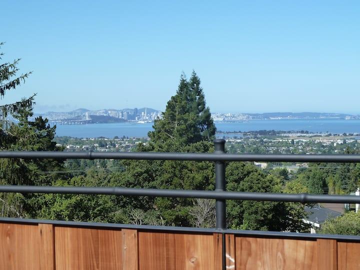 Berkeley hills vista garden retreat