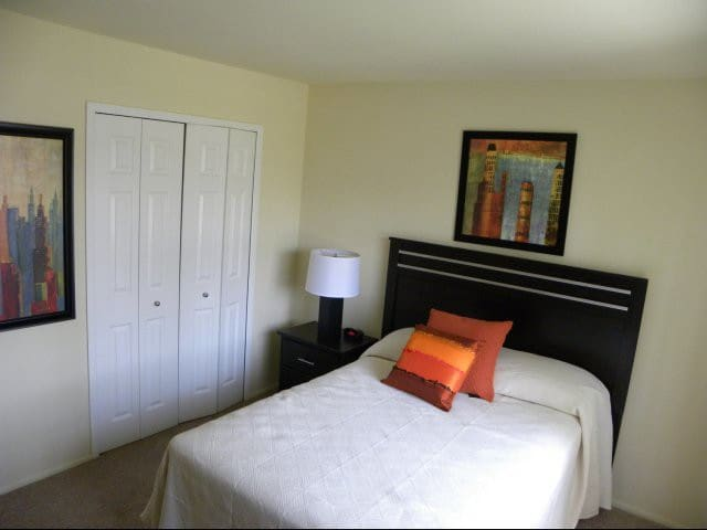 Luxury Apartment Walking Distance from MI Stadium2 - Ann Arbor - Appartement