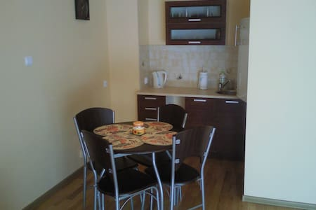 Lovely Apartment in the Town Centre - Giżycko - Huoneisto