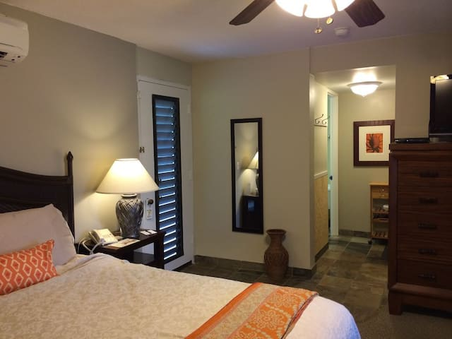Spacious King w/Full sized fold out couch,sleeps 4