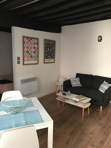 Joli appartement plein centre - Orléans - Pis