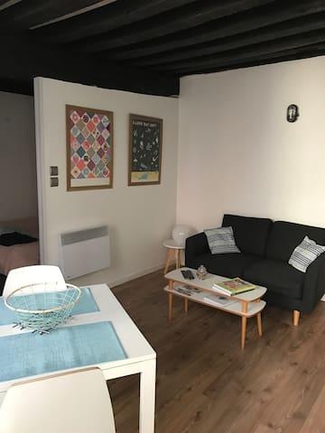 Joli appartement plein centre - Orléans - Lakás