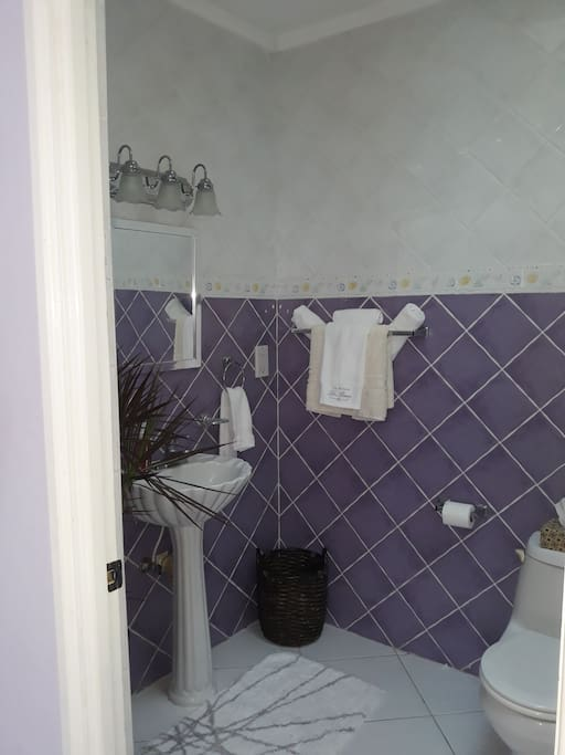 Ensuite private bathroom equipped with bathtub