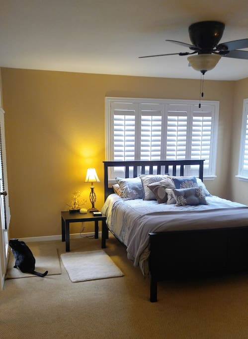 Fully Furnished (bed, dresser, large closet space, tv, wifi).