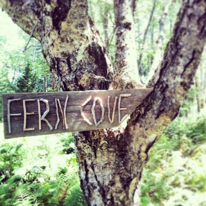 Fern Cove