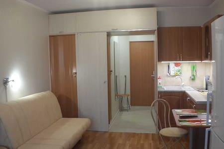 Просторная квартира для больших компаний - Novomoskovsk - 公寓
