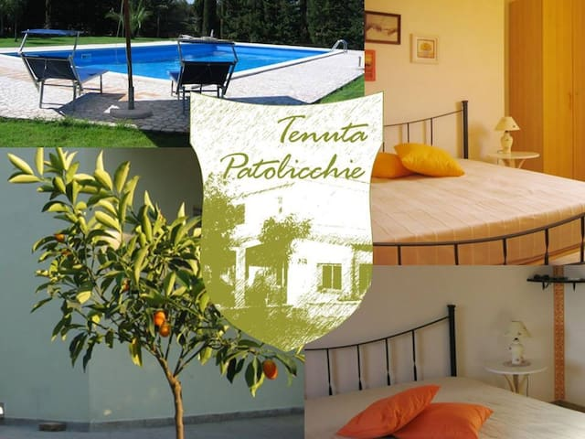 B&B immerso nel verde  con piscina - Borgagne - Bed & Breakfast