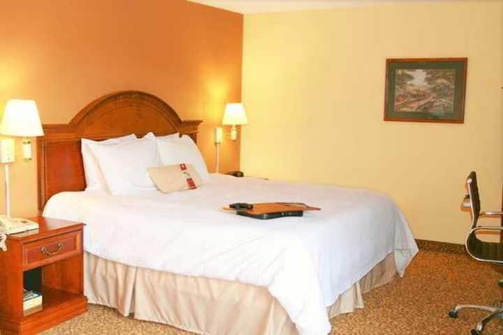 Classy Suite Business Double Bed At Greensboro