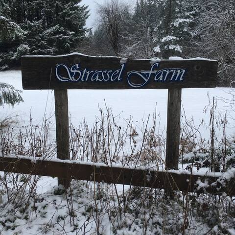 Strassel Farm House and Artist Residency