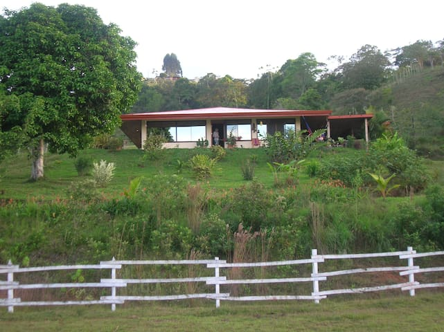Lovely home on farm above Turrialba - Turrialba  - House