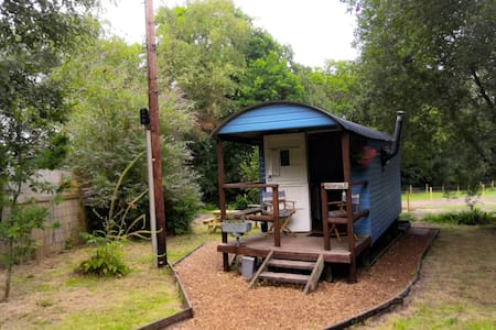 East Devon Glamping with all the mod cons