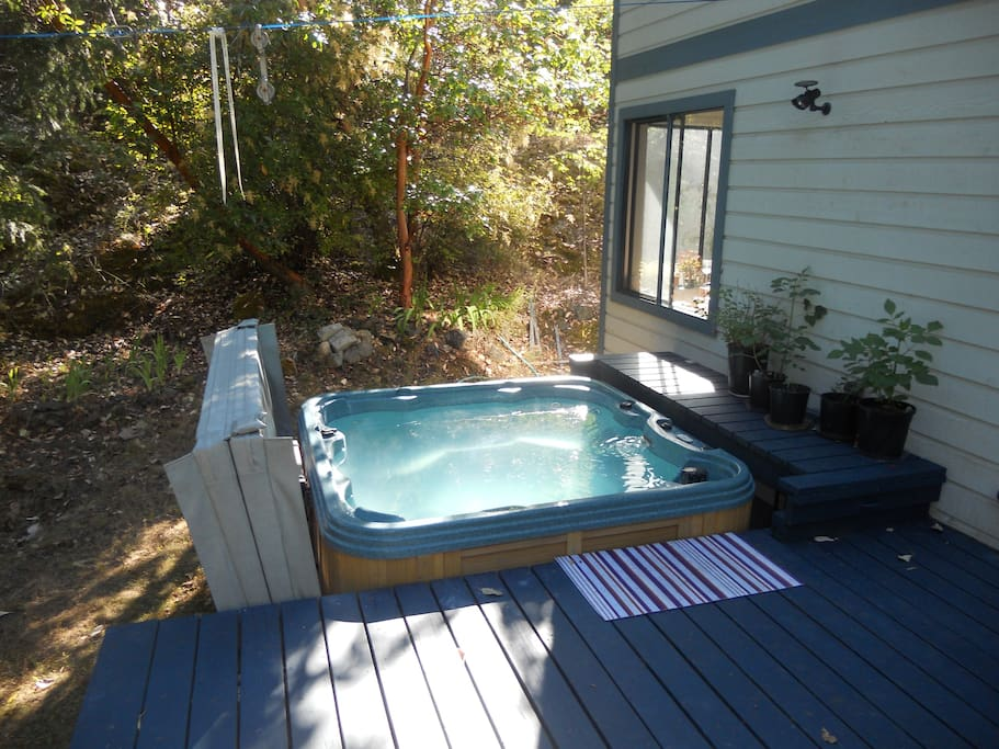 Hot tub outdoors under the stars in this 7 person spa with 30 jets, interior lighting!