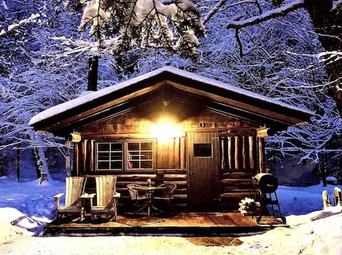 "Rustic Log Cabin #1 - ""Rustic Retreat"""