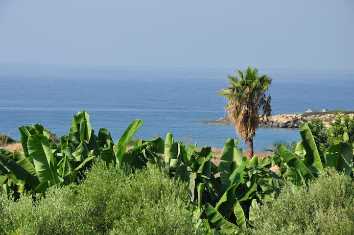 Villa in Coral Bay with pool - Peyia