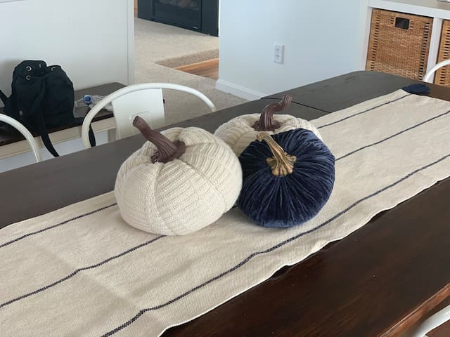 Fall is Here! Who hasn't seen blue pumpkins before?
