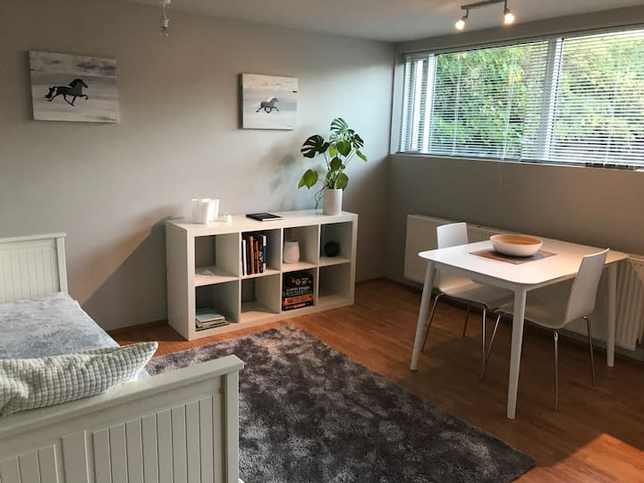 Cosy apartment outside Reykjavik