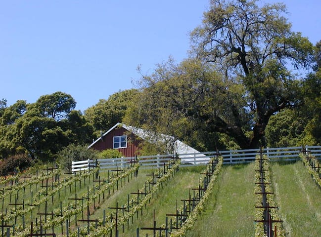 The Inn at Le Vin Winery & Wedding Location - Healdsburg - Hus