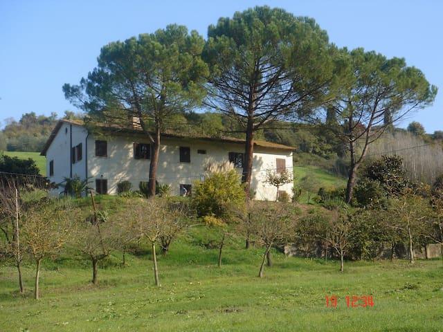 San Miniato, Tuscany - Apartment  - San Miniato - บ้าน