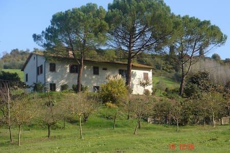 San Miniato, Tuscany - Apartment  - San Miniato - Casa