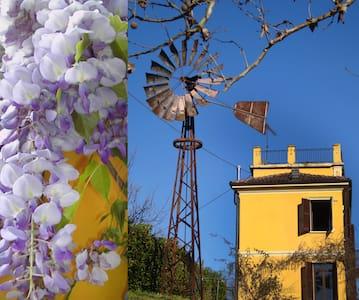 Casa nelle campagne di Alba - Santo Stefano Belbo