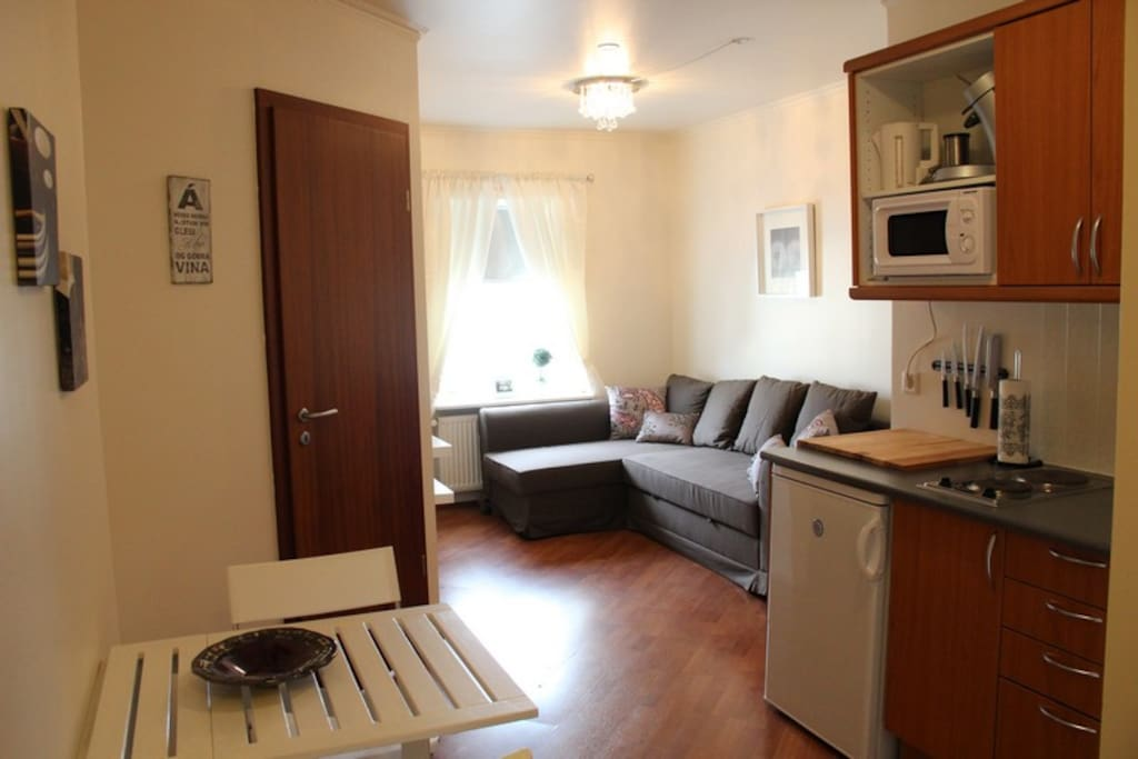 apartment in the center of akureyri wohnungen zur miete. Black Bedroom Furniture Sets. Home Design Ideas