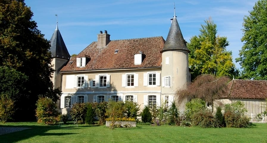 Magnificent private Chateau in Champagne - Rumilly-les-Vaudes