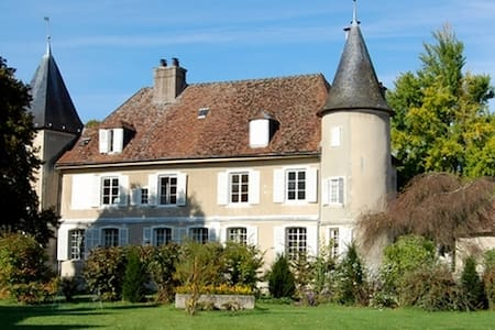 Magnificent private Chateau in Champagne - Rumilly-les-Vaudes - Castell