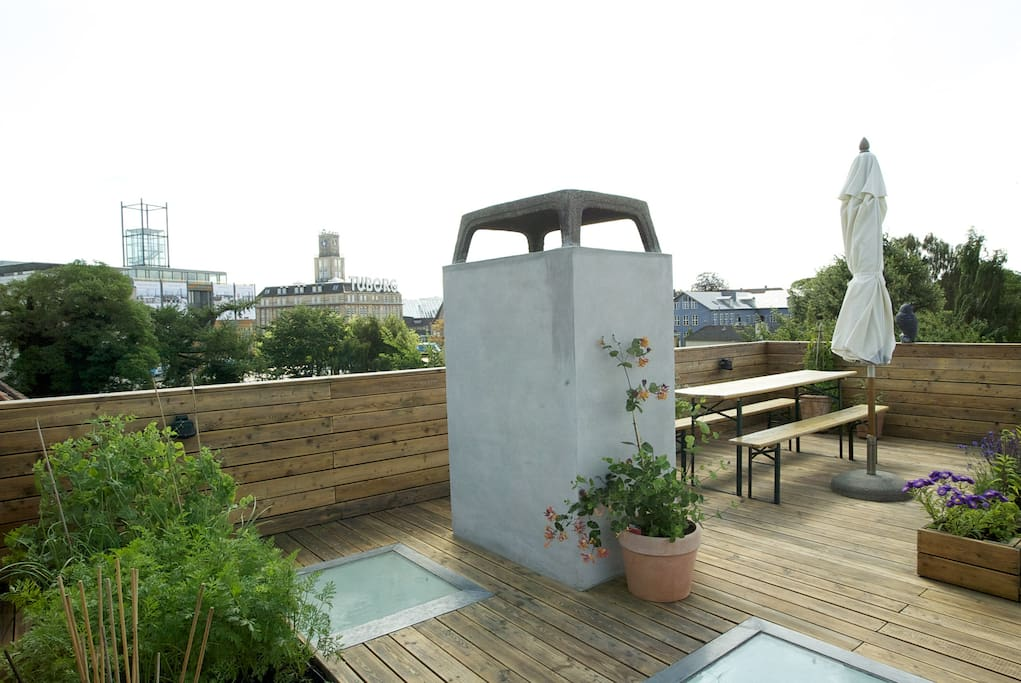 Rooftop terrace. Feel free to use the herbs and vegetables in your cooking.