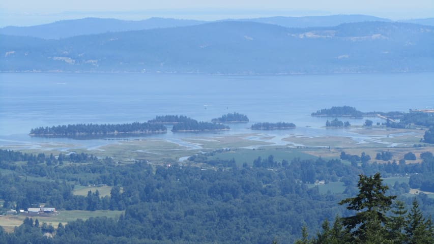 Where the creek meet the Salish Sea