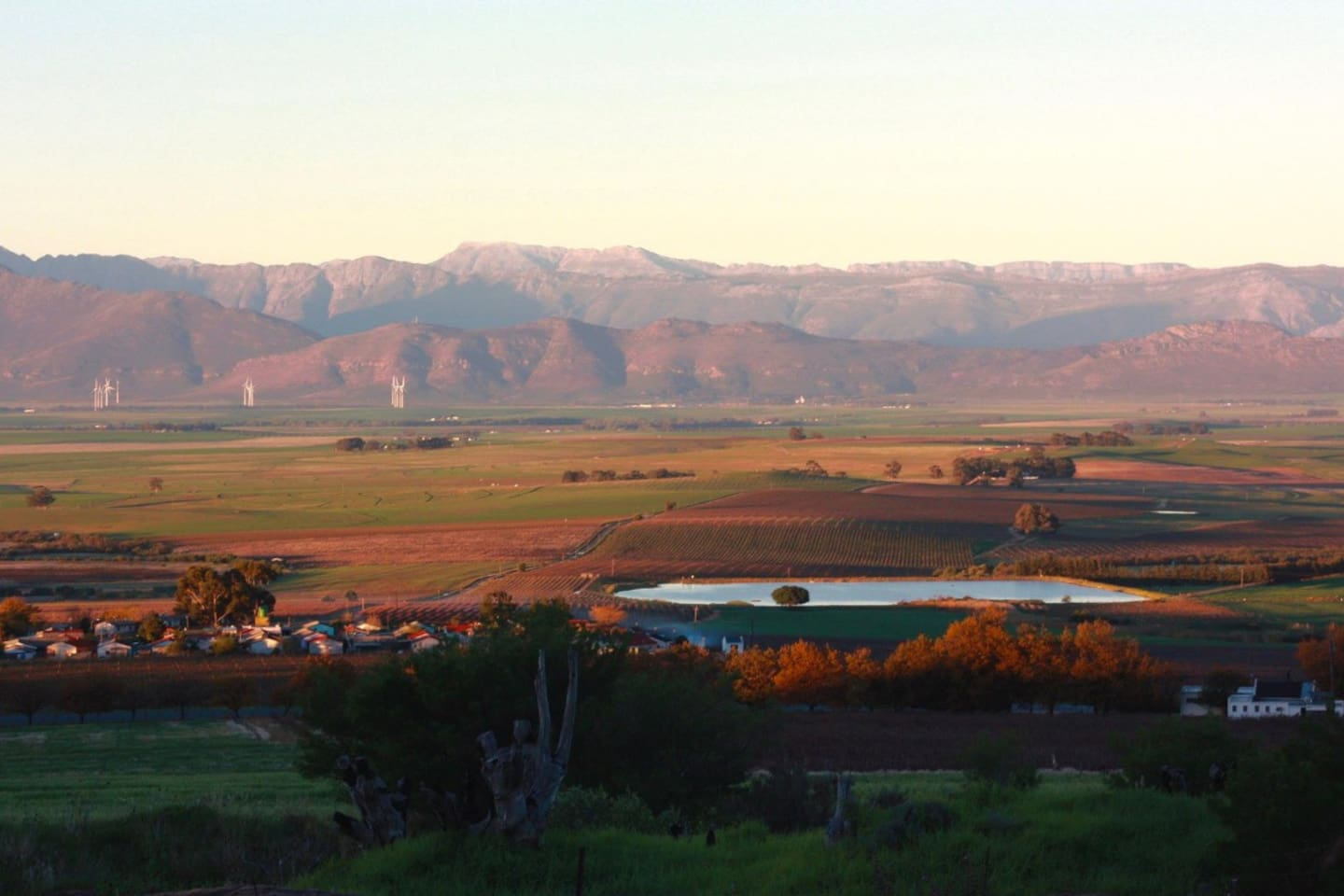 """Here is a panaromic view of the Riebeeck valley which you will experience exactly like this from the front """"stoep"""" of The Vines. This was a sunset captured ."""