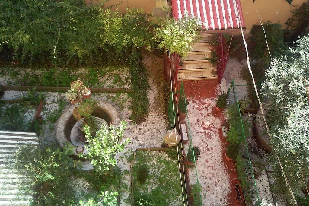 vista dalla finestra cucina sul giardino condominiale