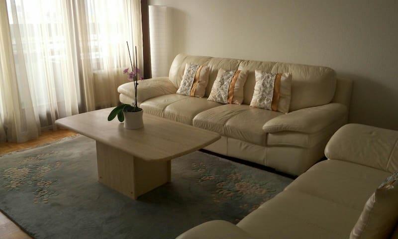 Cozy & clean room in heart of city - Ecublens - Departamento