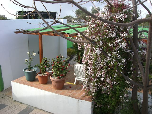 Comfortable home suitable for 4 golfers - Tavira - House