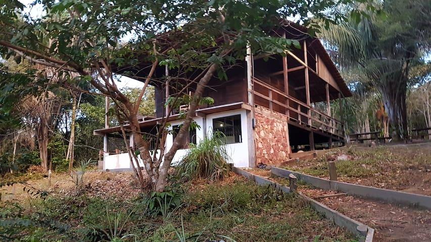 Guesthouse Tamandua