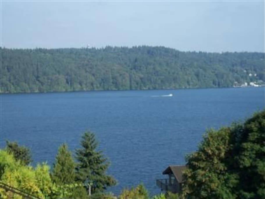 The beautiful view of Lake Washington and St. Edwards Park from the house.