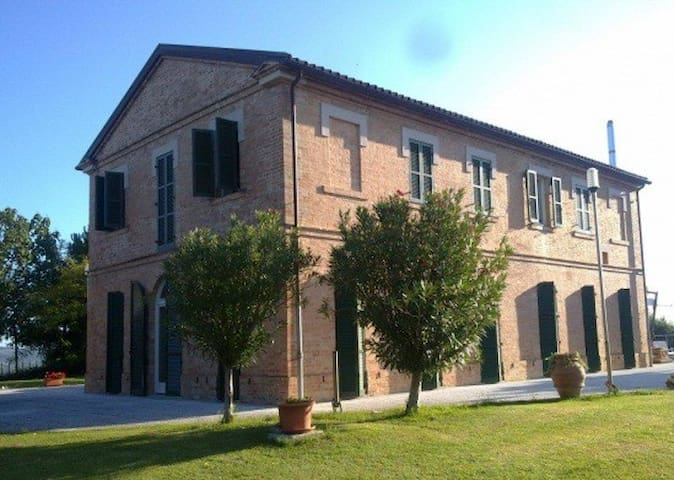 B&B LA COLLINETTA - Monte Roberto - Bed & Breakfast