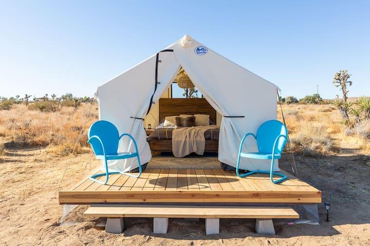 Charming Private Desert Safari Experience