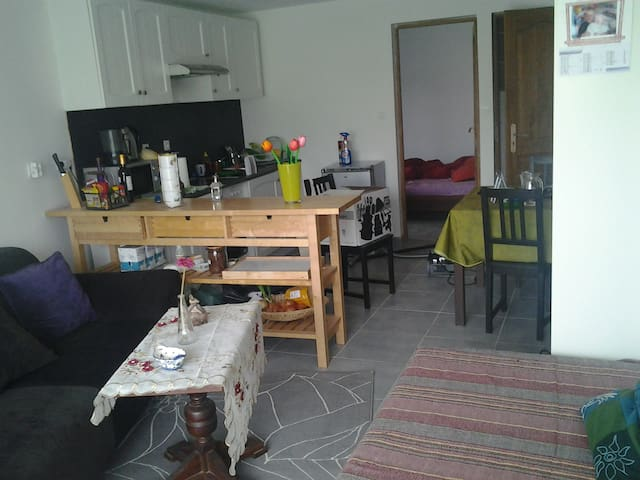 Cozy Flat in Bordeaux region - Saint-Ciers-sur-Gironde - Departamento