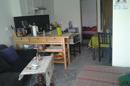 Cozy Flat in Bordeaux region - Saint-Ciers-sur-Gironde