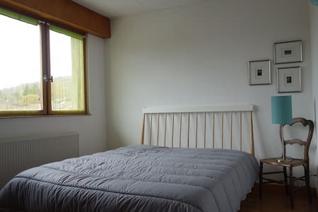 1 chambre location ou colocation - Lay-Saint-Christophe - Dům