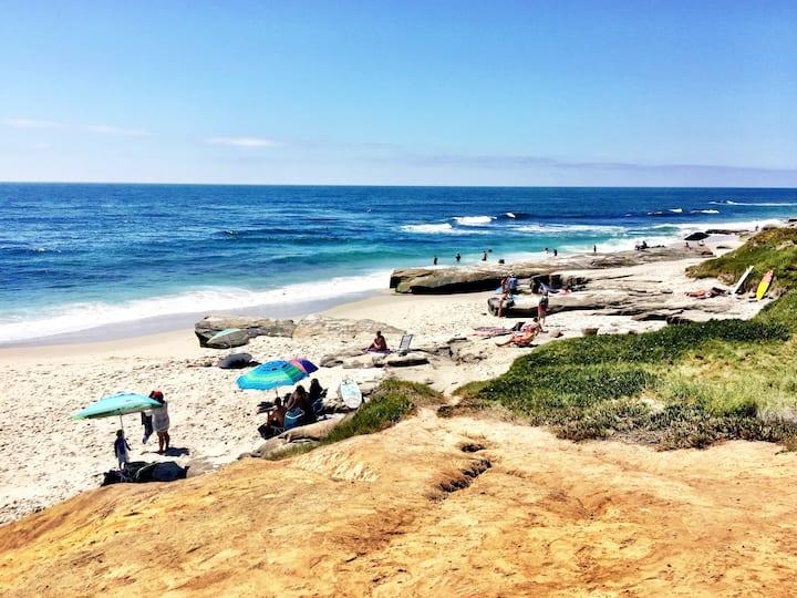 Beautiful Ocean View Home, La Jolla, Fun Beaches