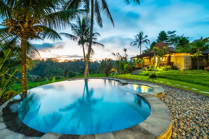 1 Bungalow w/great Paddy Field view+pool 48% OFF