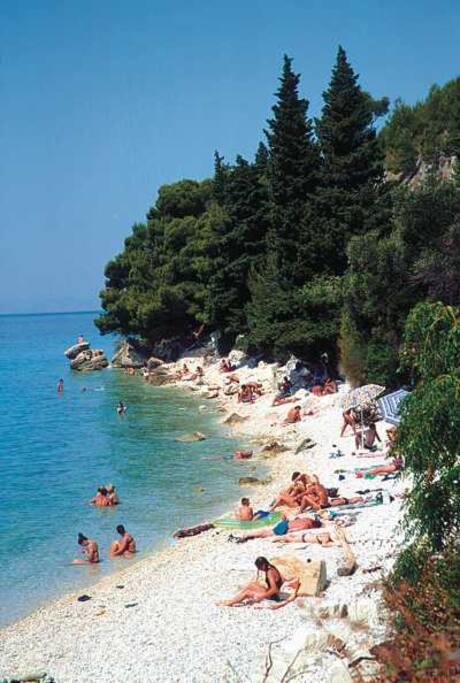 Popular Zaostrog beach