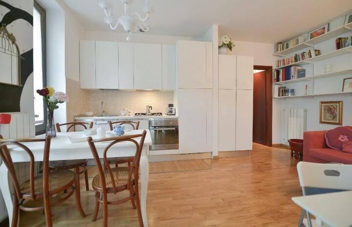 Stunning apartment with garden in Bovisa 80299