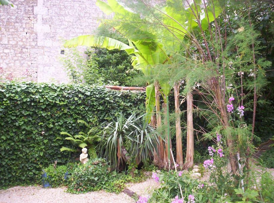 Chambre plain pied vue sur jardin m dit ran en chambres d 39 h tes louer fontenay le comte - Vive le jardin fontenay le comte ...