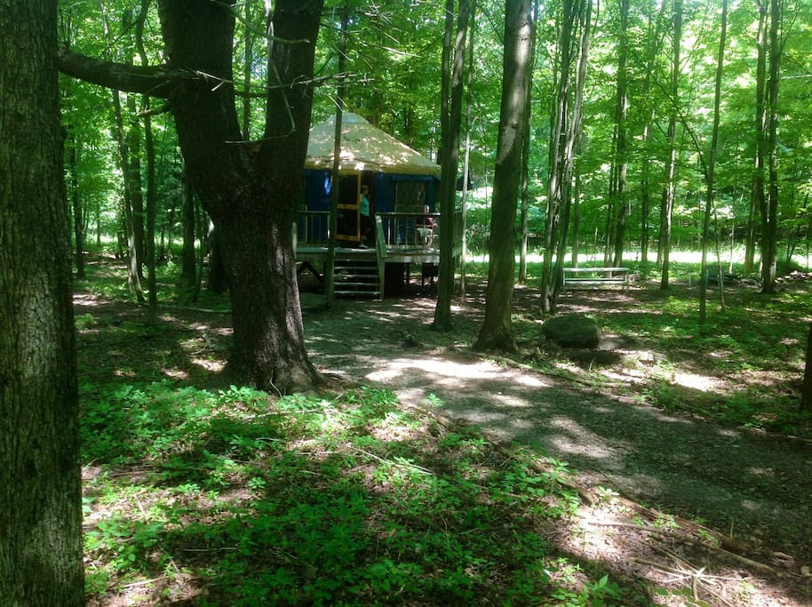 the other yurt in summer
