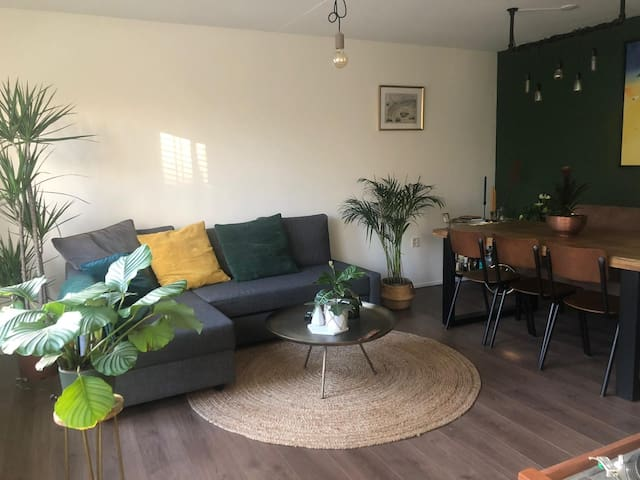 Cozy, Modern and Bright apartment 2 guests